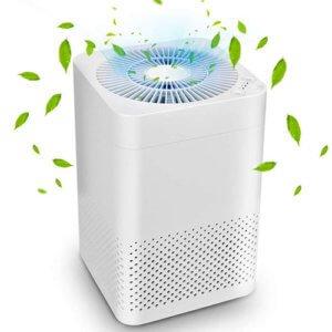 Air Choice True HEPA Air Purifier